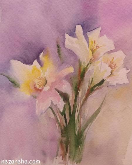 تصاویر دسته گل نرگس , عکس های گل نرگس , عکس پروفایل گل نرگس , گل نرگس